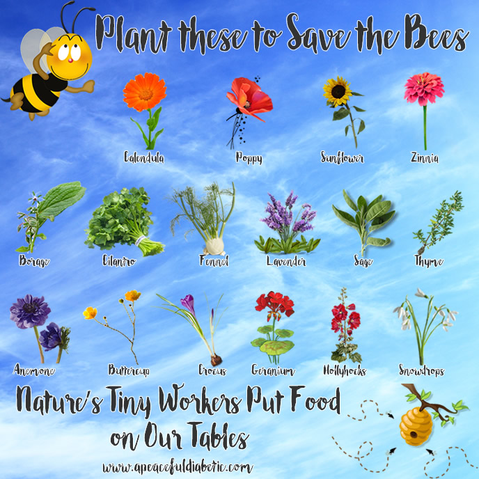 Plant these to Save the Bees