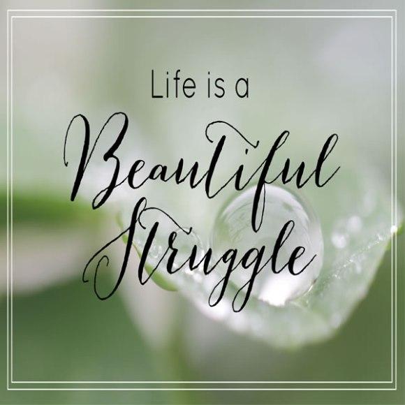 beautiful-struggle
